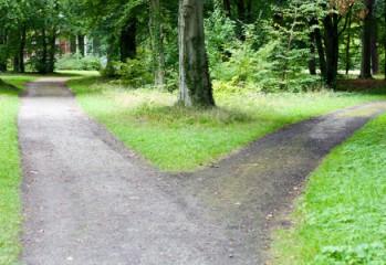 publishing-path